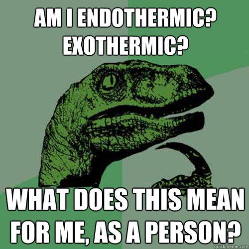 endothermic exothermic MEMEs