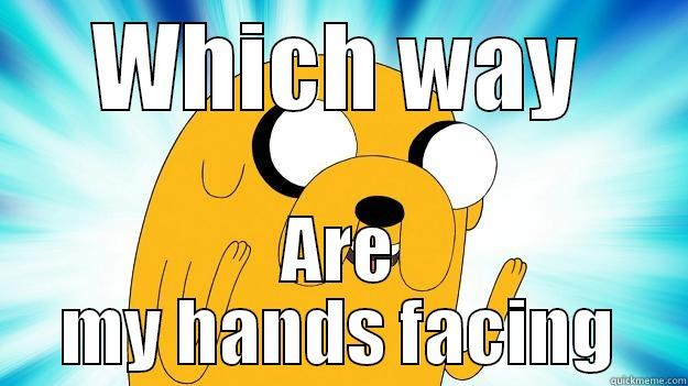 WHICH WAY ARE MY HANDS FACING Jake The Dog