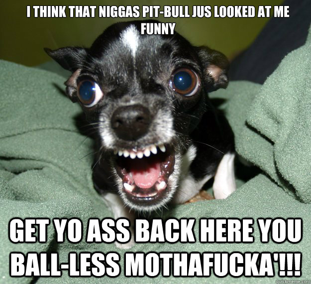 I think that niggas pit-bull jus looked at me funny     get yo ass back here you ball-less mothafucka'!!!