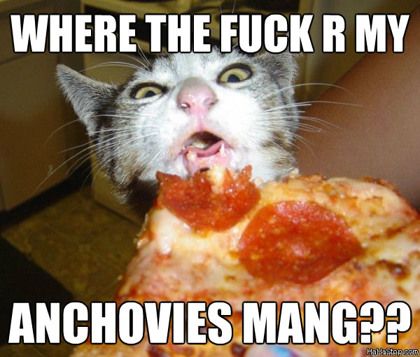 Where The Fuck R My Anchovies Mang Pizza Meme Quickmeme