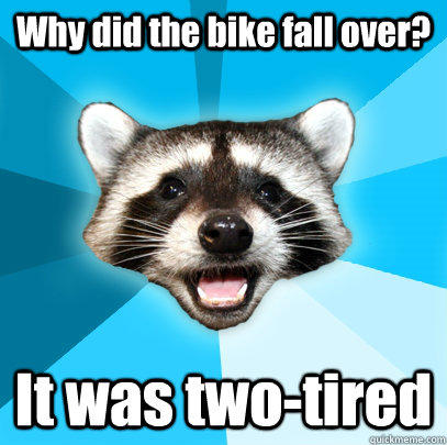 Why did the bike fall over? It was two-tired  Lame Pun Coon