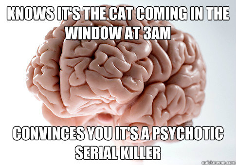 Knows it's the cat coming in the window at 3am Convinces you it's a Psychotic serial killer - Knows it's the cat coming in the window at 3am Convinces you it's a Psychotic serial killer  Scumbag Brain