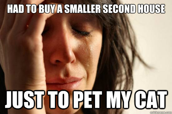 Had to buy a smaller second house Just to pet my cat - Had to buy a smaller second house Just to pet my cat  First World Problems