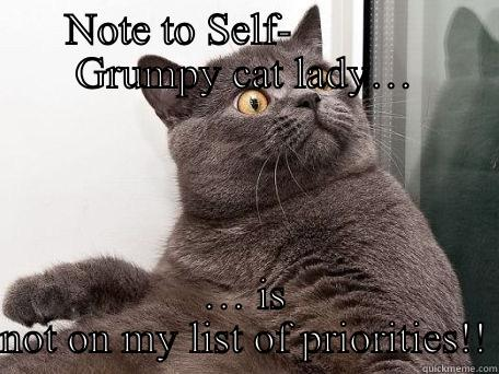 NOTE TO SELF-              GRUMPY CAT LADY… … IS NOT ON MY LIST OF PRIORITIES!! conspiracy cat