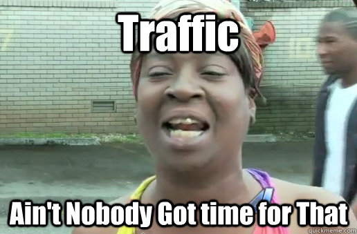 Traffic Ain't Nobody Got time for That