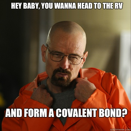Hey baby, you wanna head to the RV and form a covalent bond?