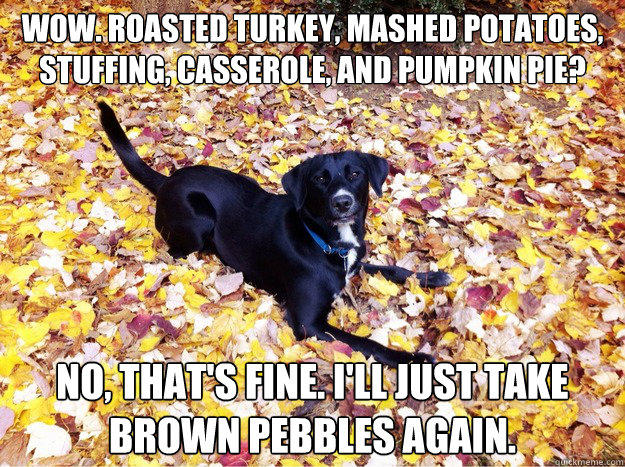 Wow. Roasted Turkey, mashed potatoes, stuffing, casserole, and pumpkin pie? No, that's fine. I'll just take brown pebbles again.