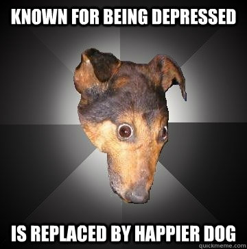 KNOWN FOR BEING DEPRESSED IS REPLACED BY HAPPIER DOG - KNOWN FOR BEING DEPRESSED IS REPLACED BY HAPPIER DOG  Depression Dog