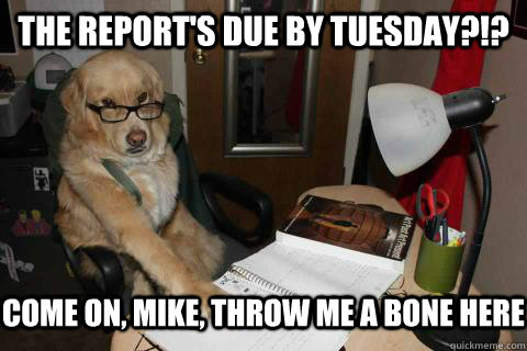 The Report's due by Tuesday?!? Come on, Mike, throw me a bone here - The Report's due by Tuesday?!? Come on, Mike, throw me a bone here  Misc