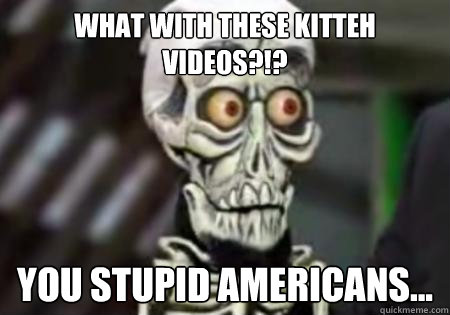 What with these kitteh videos?!? You stupid americans... - What with these kitteh videos?!? You stupid americans...  Words of Wisdom from Achmed