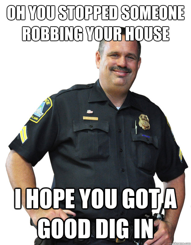 Oh you stopped someone robbing your house I hope you got a good dig in - Oh you stopped someone robbing your house I hope you got a good dig in  Good Guy Cop