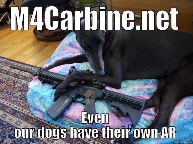 M4CARBINE.NET EVEN OUR DOGS HAVE THEIR OWN AR Misc