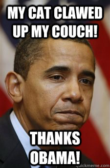 my cat clawed up my couch! Thanks Obama! - my cat clawed up my couch! Thanks Obama!  Everything Is Barack Obamas Fault