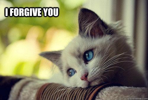 86062ab8b74cbb9733bb44eb769f3c87601821fa04e21291c4650a127ce426a8 i forgive you first world cat problems quickmeme,I Forgive You Meme