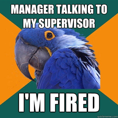 manager talking to my supervisor I'm fired - manager talking to my supervisor I'm fired  Paranoid Parrot