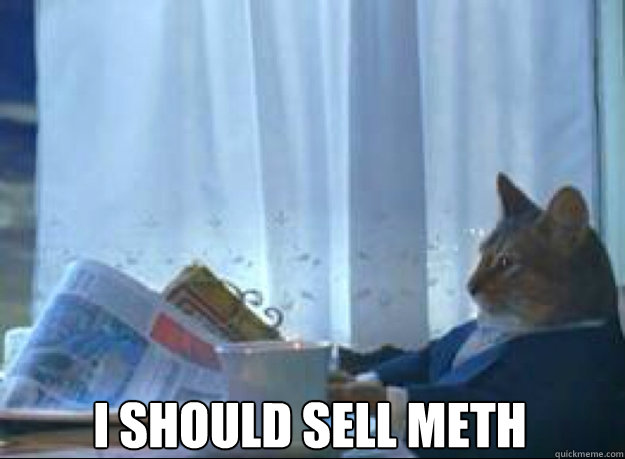 I should sell meth  - I should sell meth   I should buy a boat cat