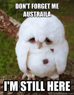 Dont Forget Me Austraila Im Still Here Sad Owl Quickmeme