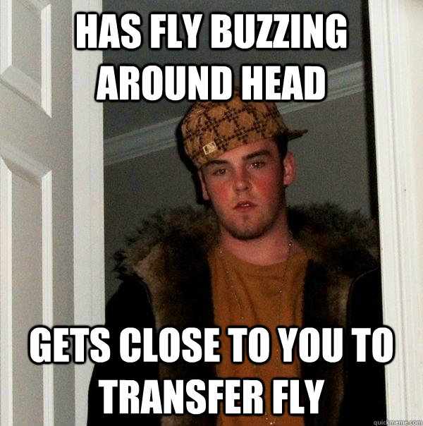 has fly buzzing around head gets close to you to transfer fly - has fly buzzing around head gets close to you to transfer fly  Scumbag Steve