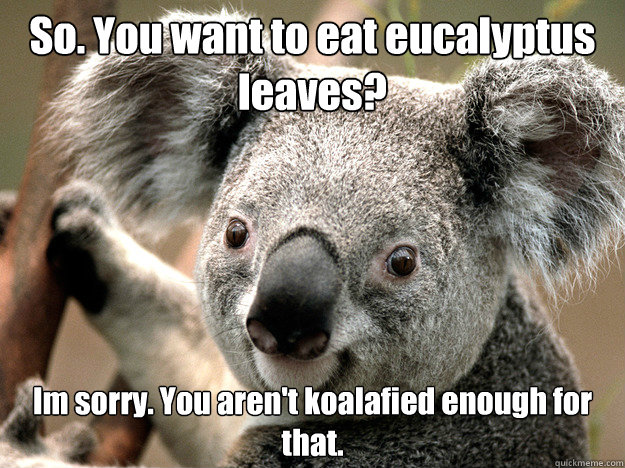 So. You want to eat eucalyptus leaves? Im sorry. You aren't koalafied enough for that.