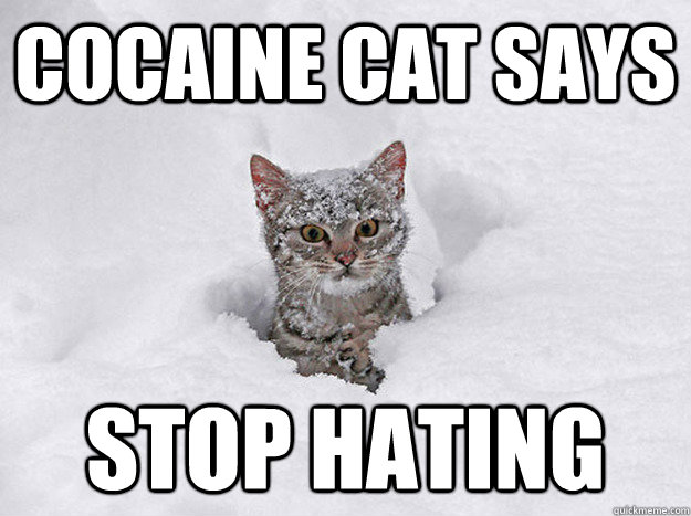 Cocaine Cat Says Stop Hating
