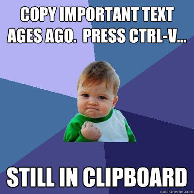 Copy important text ages ago.  Press ctrl-v... still in clipboard - Copy important text ages ago.  Press ctrl-v... still in clipboard  Success Kid