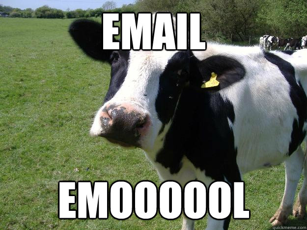 email emoooool  Whatcowwhat
