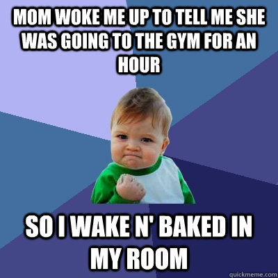 mom woke me up to tell me she was going to the gym for an hour so i wake n' baked in my room - mom woke me up to tell me she was going to the gym for an hour so i wake n' baked in my room  Success Kid