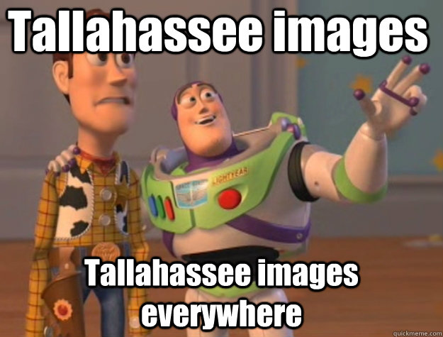Tallahassee images Tallahassee images everywhere - Tallahassee images Tallahassee images everywhere  Pinks everywhere