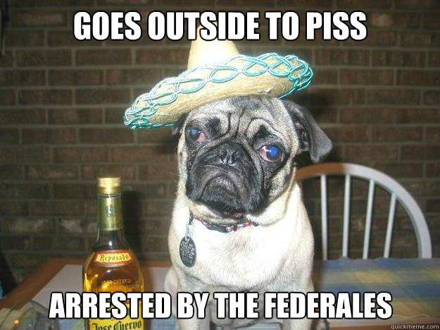 goes outside to piss arrested by the federales