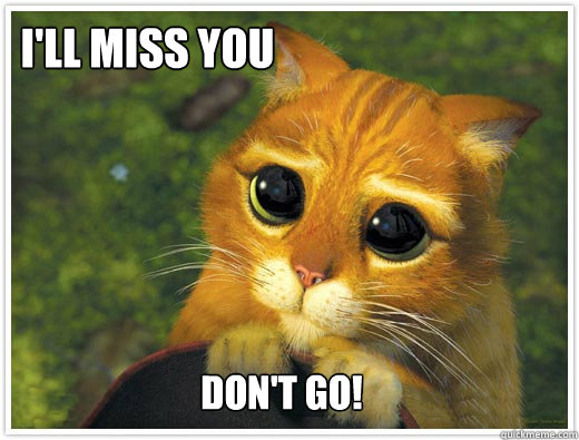 I Will Miss You Meme Funny : I ll miss you don t go shrek cat quickmeme