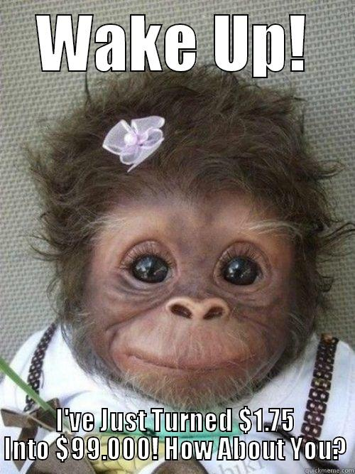 Wake up monkey - WAKE UP! I'VE JUST TURNED $1.75 INTO $99.000! HOW ABOUT YOU? Misc