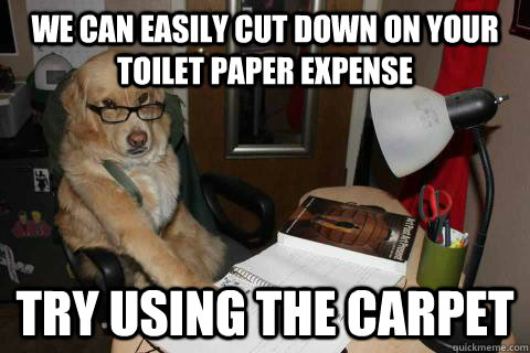 we can easily cut down on your toilet paper expense try using the carpet - we can easily cut down on your toilet paper expense try using the carpet  Financial Advice Dog