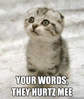 Your words,  they Hurtz mee  Sad cat
