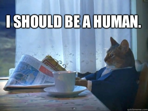 I should be a human. - I should be a human.  1% Cat