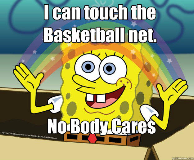I can touch the Basketball net.     No Body Cares - I can touch the Basketball net.     No Body Cares  Nobody Cares