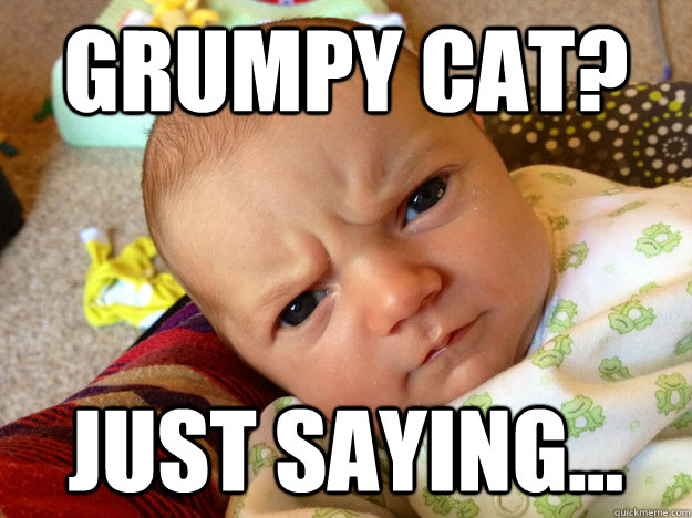 Grumpy Cat? Just saying... - Grumpy Cat? Just saying...  Misc