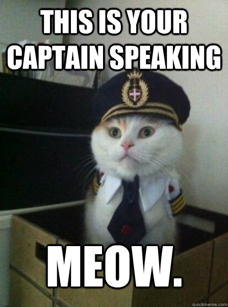 THIS IS YOUR CAPTAIN SPEAKING MEOW.