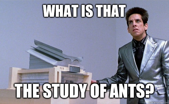 What is that The study of ants? - What is that The study of ants?  Planetside Zoolander