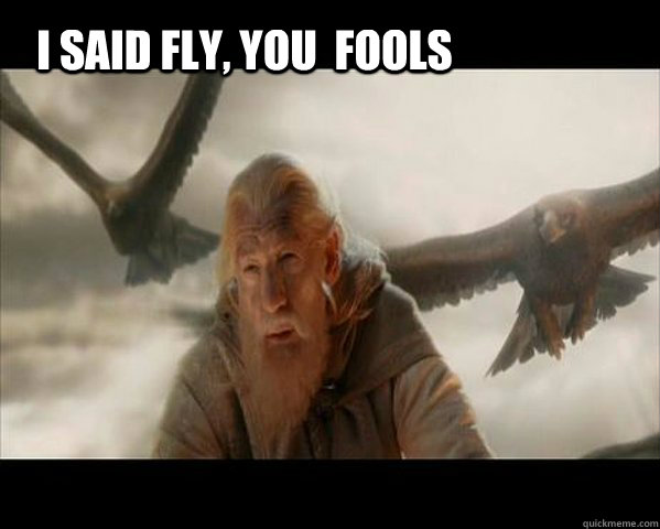 I said fly, you  fools - I said fly, you  fools  Gandalf the Gray
