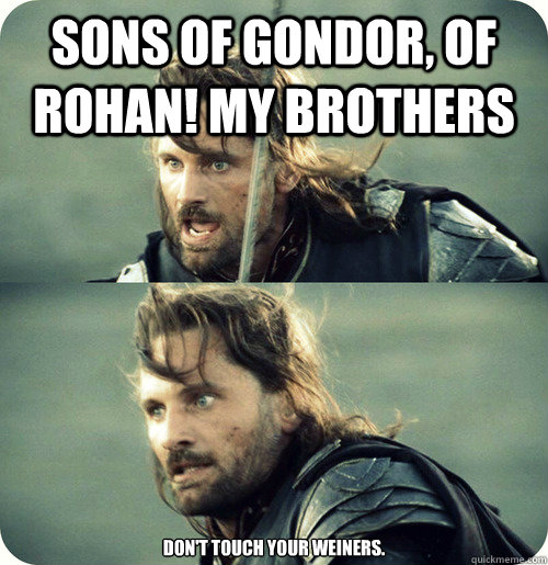 Sons of gondor, of rohan! my brothers don't touch your weiners.