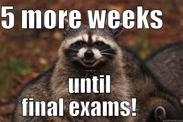 5 MORE WEEKS     UNTIL FINAL EXAMS!      Evil Plotting Raccoon