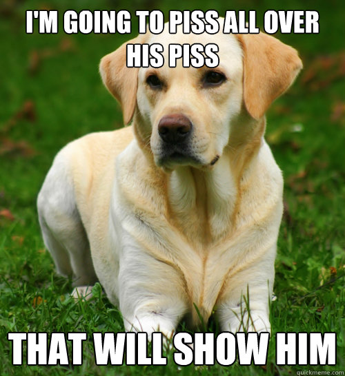 I'm going to piss all over his piss That will show him - I'm going to piss all over his piss That will show him  Dog Logic