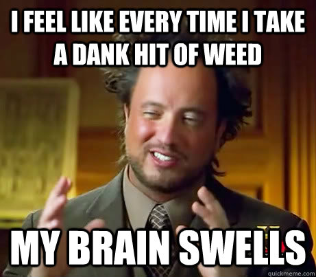 I FEEL LIKE EVERY TIME I TAKE A DANK HIT OF WEED MY BRAIN SWELLS - I FEEL LIKE EVERY TIME I TAKE A DANK HIT OF WEED MY BRAIN SWELLS  Anciet Alien