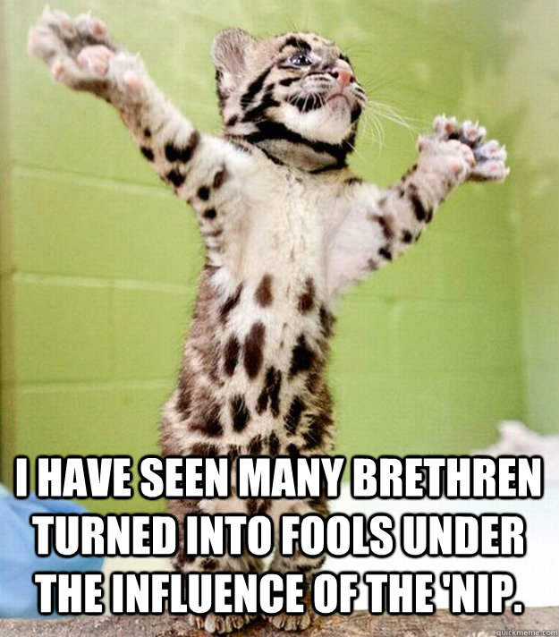 I have seen many brethren turned into fools under the influence of the 'nip.