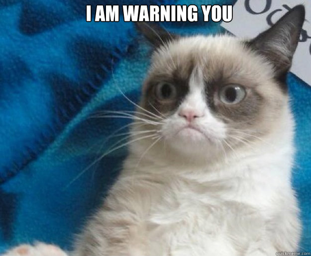 i am warning you   Grumpy Cat No
