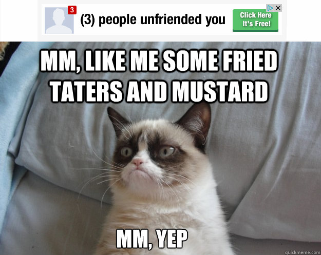 mm, like me some fried taters and mustard mm, yep - mm, like me some fried taters and mustard mm, yep  Grumpy Cat on Being Unfriended