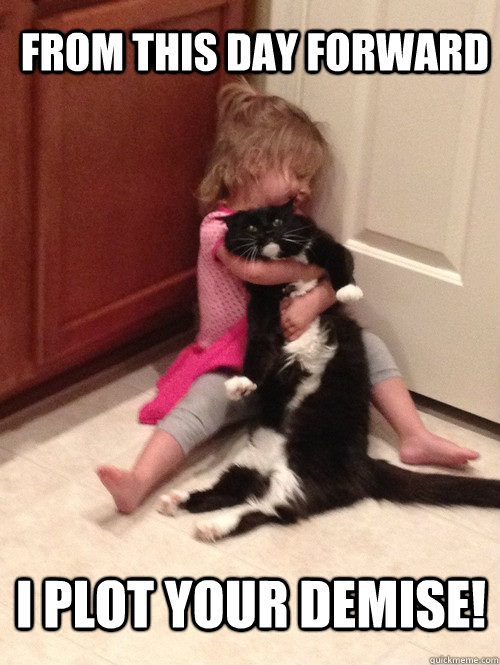 FROM THIS DAY FORWARD I PLOT YOUR DEMISE! - FROM THIS DAY FORWARD I PLOT YOUR DEMISE!  Cat vs Toddler