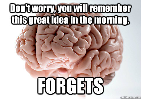 Don't worry, you will remember this great idea in the morning. FORGETS  - Don't worry, you will remember this great idea in the morning. FORGETS   Scumbag Brain
