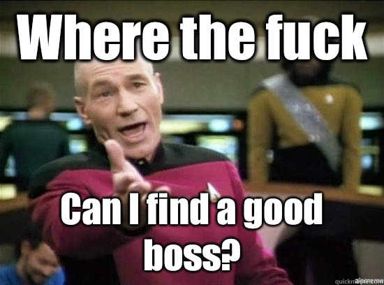 Where the fuck Can I find a good boss? - Where the fuck Can I find a good boss?  Annoyed Picard HD