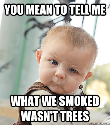 you mean to tell me What we smoked wasn't trees  skeptical baby